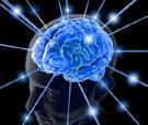 http://www.pointsincase.com/files/images/brain-analysis.jpg