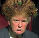 Donald Trump with huge hair
