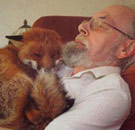 Old man with his fox sleeping