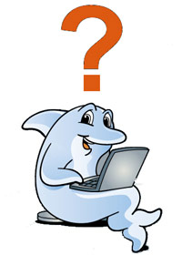 Dolphin taking a quiz on a laptop