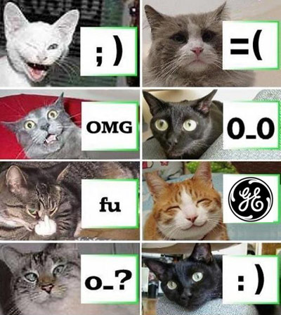 General Electric Funny Cats Distraction iPhone App