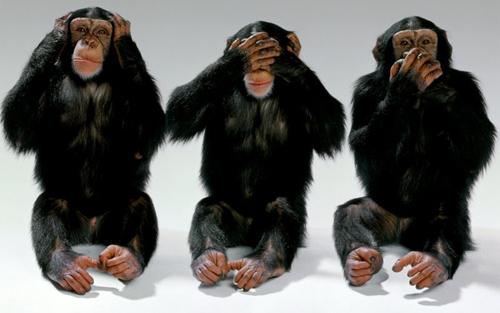 monkey-see-hear-talk