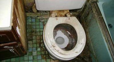 Spycams.me - порно видео со скрытых камер в туалетах ...