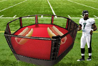 WWE ring on the football field