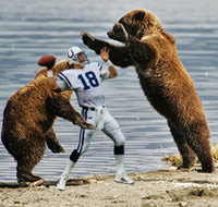 Peyton Manning being mauled by grizzly bears during a pass