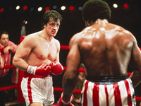 Rocky in a boxing ring fight