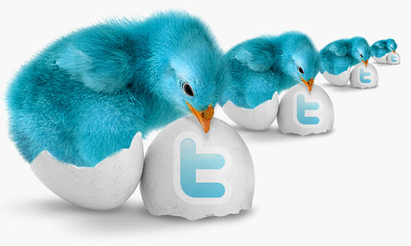 Twitter egg hatches