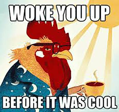Woke you up, Rooster