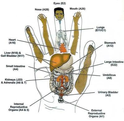KC vs. Acupuncture