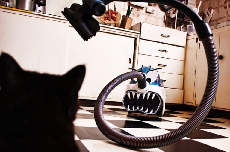 Scary vacuum cleaner
