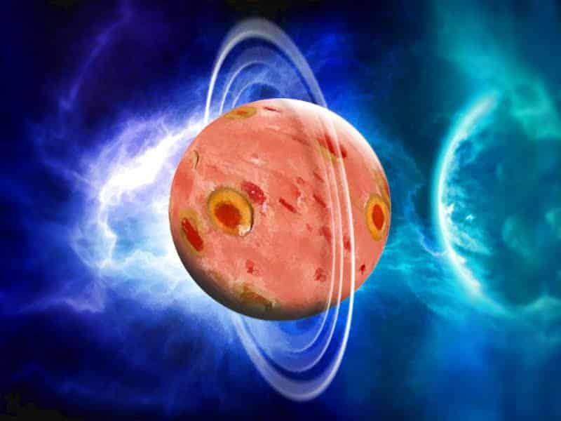 Planet Olive Loaf