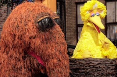 Snuffalupagus and Big Bird on Sesame Street