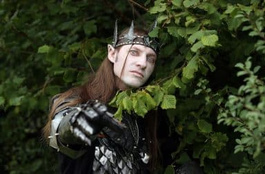 Middle-Earth Elves in the forest
