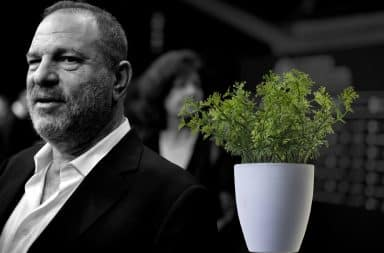 Harvey Weinstein and the potted plant he masturbated into at a restaurant in New York