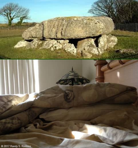 Cairn and green pillow in bedroom