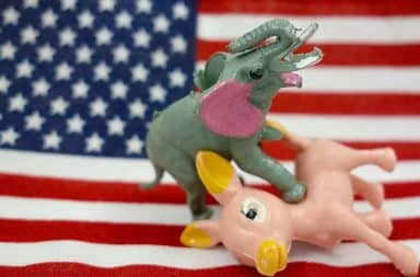 Donkey and elephant in sexual position on top of an American flag