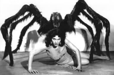 Tarantula woman