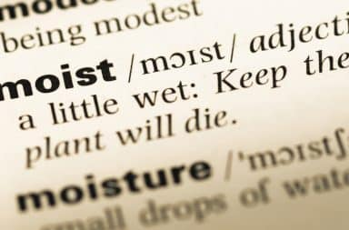moist in a dictionary