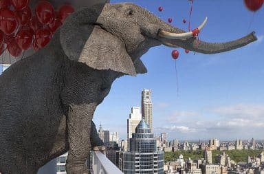 Elephant on a condo balcony