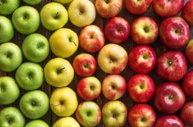 Crunch crunch munch munch it's apples