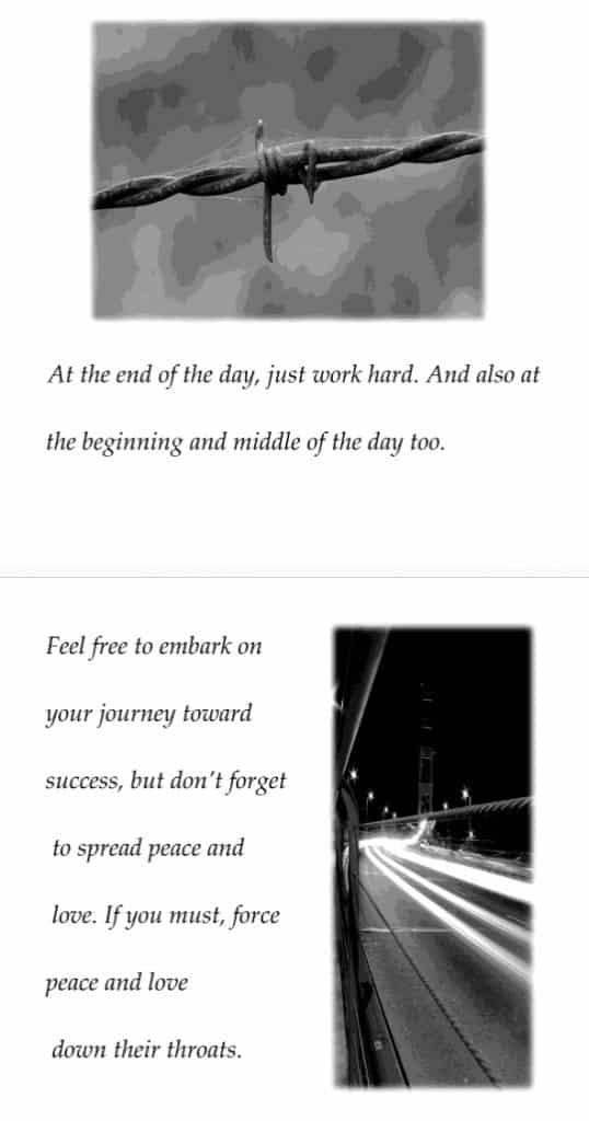 Believe in Yourself, Stupid (inside book)