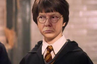 Harry Potter is...Don Trump?!