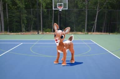 rudolph sucks at basketball