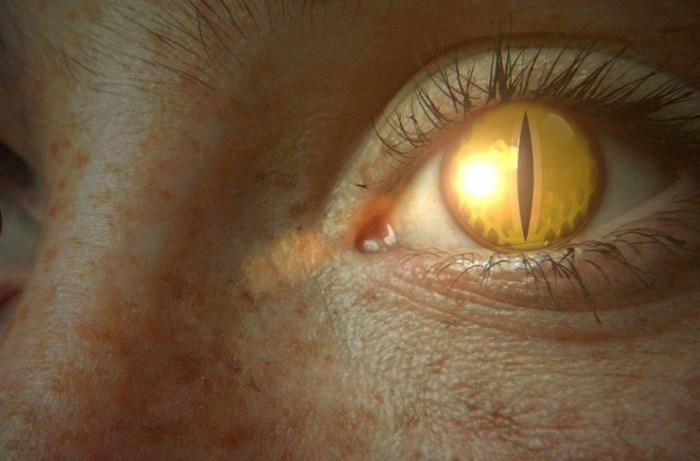 oh no a reptilian eye