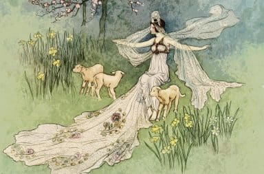 ah yeah rad as hell it's the fairy and her sheeps