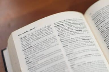 dictionary the book that's about words
