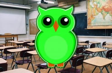 duolingo owl in the class