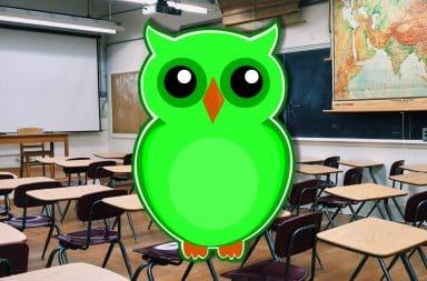 duolingo owl in the class