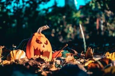 Scary pumpkin in the yard