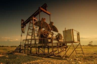 oil oil oil!
