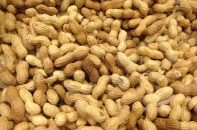 peanuts, the peaed nut