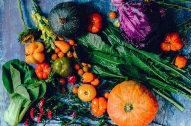 Vegetable box CSA subscription
