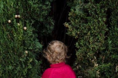 Toddler walking into bushes