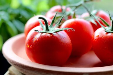 yum, those good red tomatoes