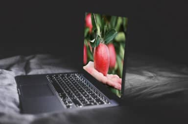 laptop apple picking