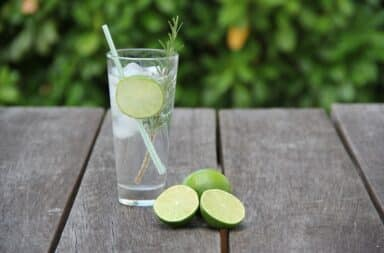 gin and tonic limes cocktail drink