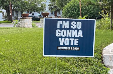 I'm So Gonna Vote (yard sign)