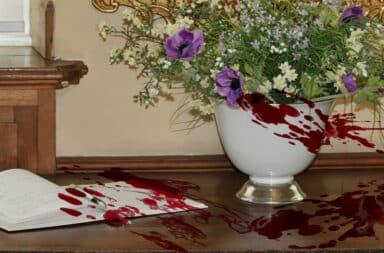 guestbook bloody murder