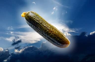 the pickle from heaven