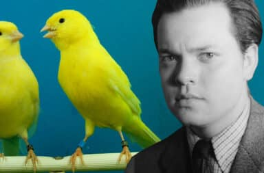 canary and orson welles