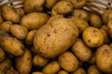 potatoes helloes