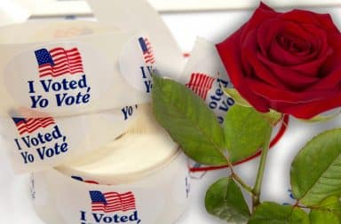 voting stickers by a rose