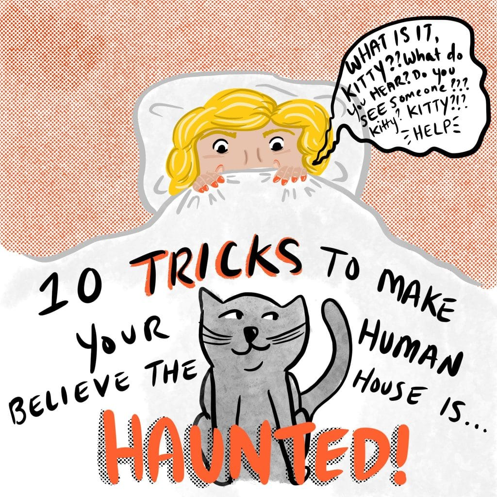 """10 TRICKS to make your human believe the house is HAUNTED! [Image of a person in bed, and a cat perched at the foot of the bed. The person is saying, """"What is it kitty?? What do you hear? Do you see someone??? Kitty? KITTY?!? -HELP-""""]"""
