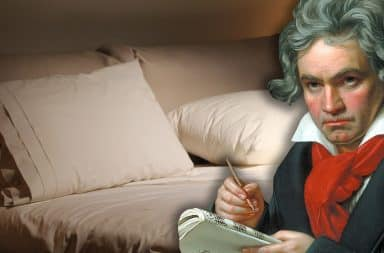 beethoven! bed!