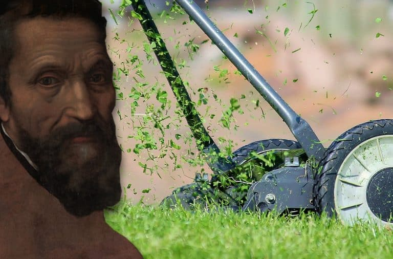 Michelangelo lawn mower