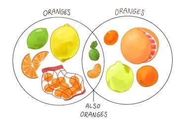 An orange by Ivy Johnson
